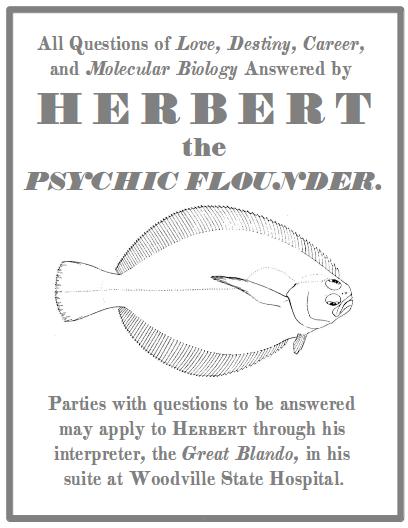 blando-herbert-the-psychic-flounder