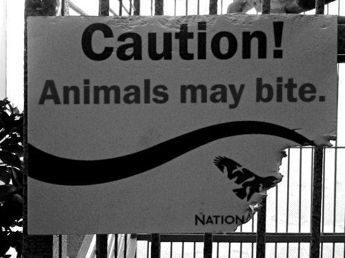 national-aviary-animals-may-bite