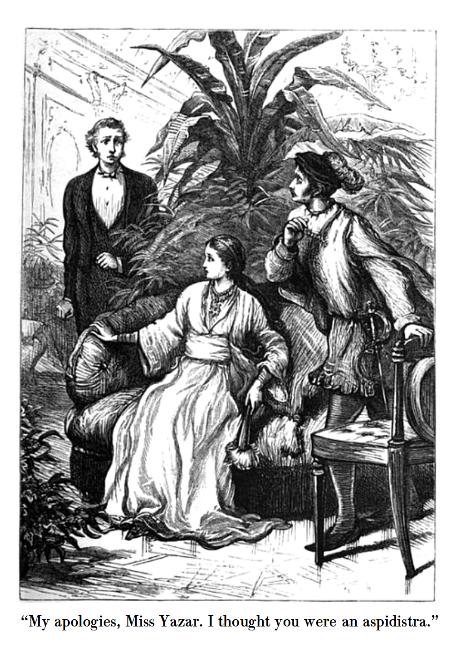 illustrated-edition-aspidistra