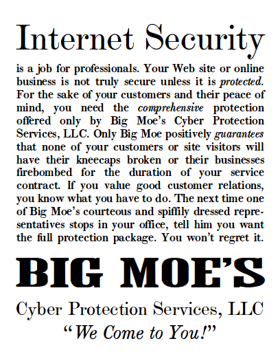 Big-Moe-s-Cyber-Protection-Services-Internet-Security