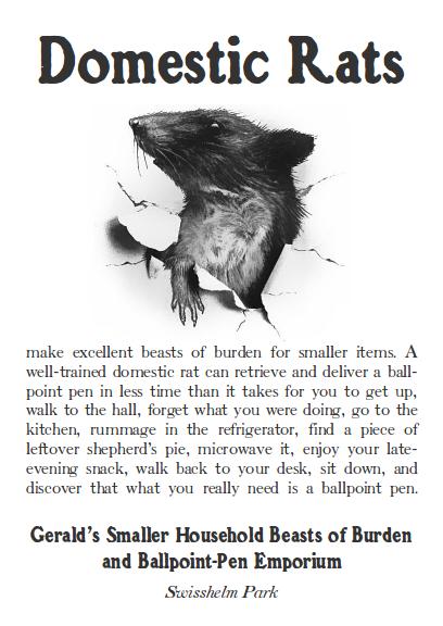 domestic-rats-beasts-of-burden