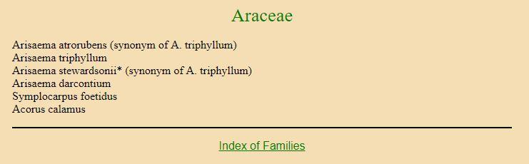 Araceae-untranslated
